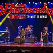 Barracuda~The Ultimate Tribute to Heart